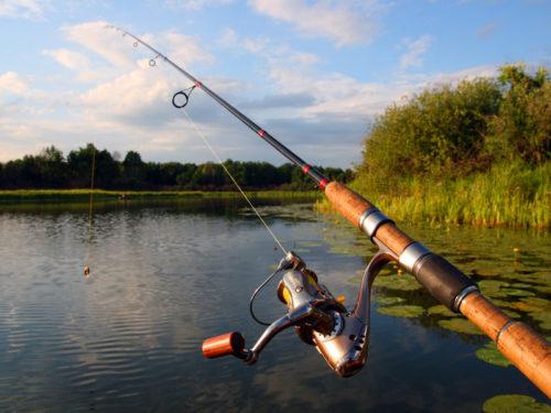 Рыбалка на спиннинг: как выбрать спиннинг, катушку, леску?